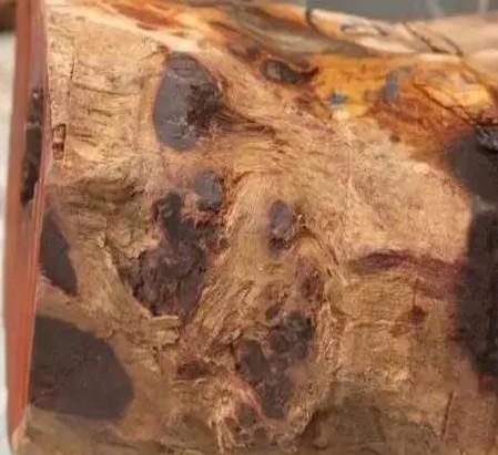 真木网:小叶紫檀树头料优缺点分析