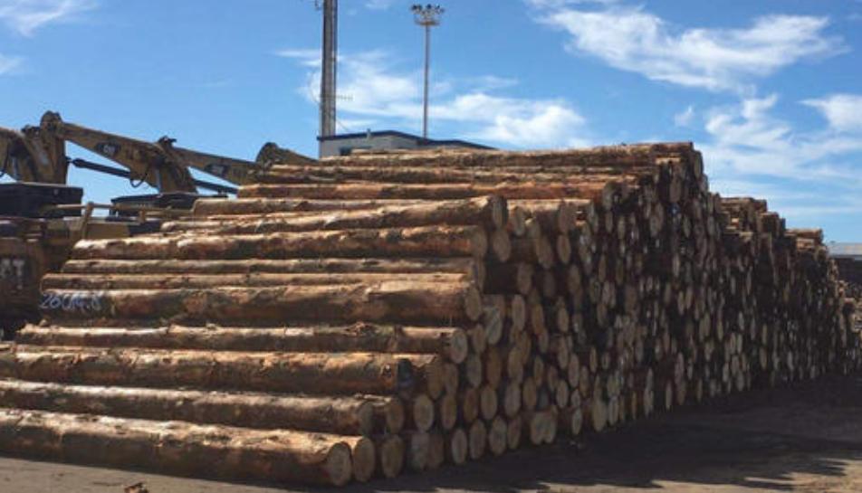 海关总署再次行动,拦下一批澳洲原木和大麦,并注销输华资格!.png