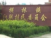 常州横林镇督查调研地板行业环保整治情况.jpg