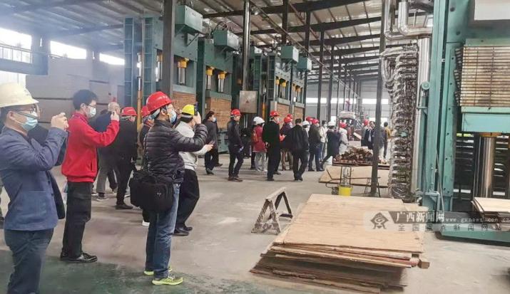 第五届广西(贵港)木材加工产业发展高峰论坛举行.png