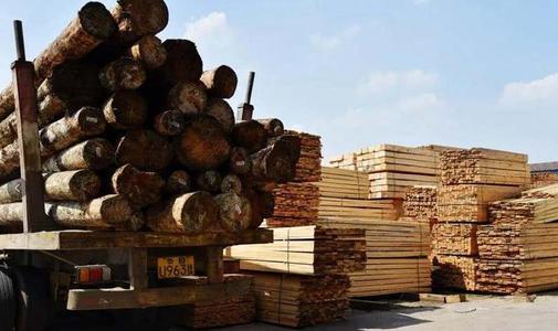 改造提升木材园区道路.jpg