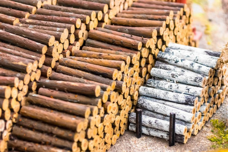 俄罗斯禁止原木出口后 中国或将改从日本进口.jpeg