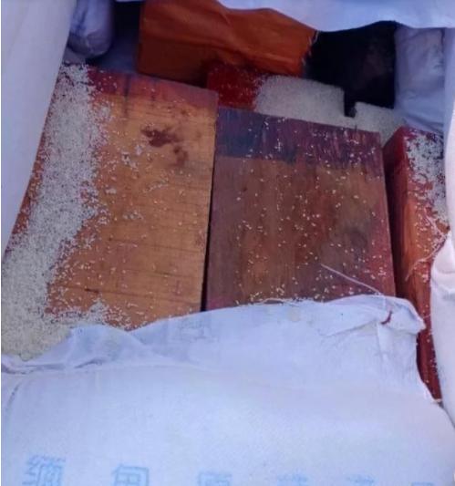 """缅甸木姐一辆运米的大货车内,竟还藏有""""私货""""花梨木.png"""