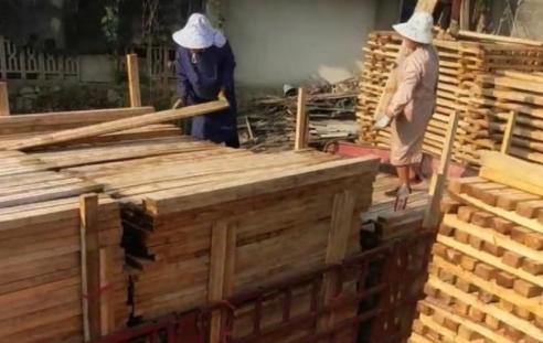 探访年销280万的木方加工厂,技术要求不高,农村夫妻做刚好合适.png