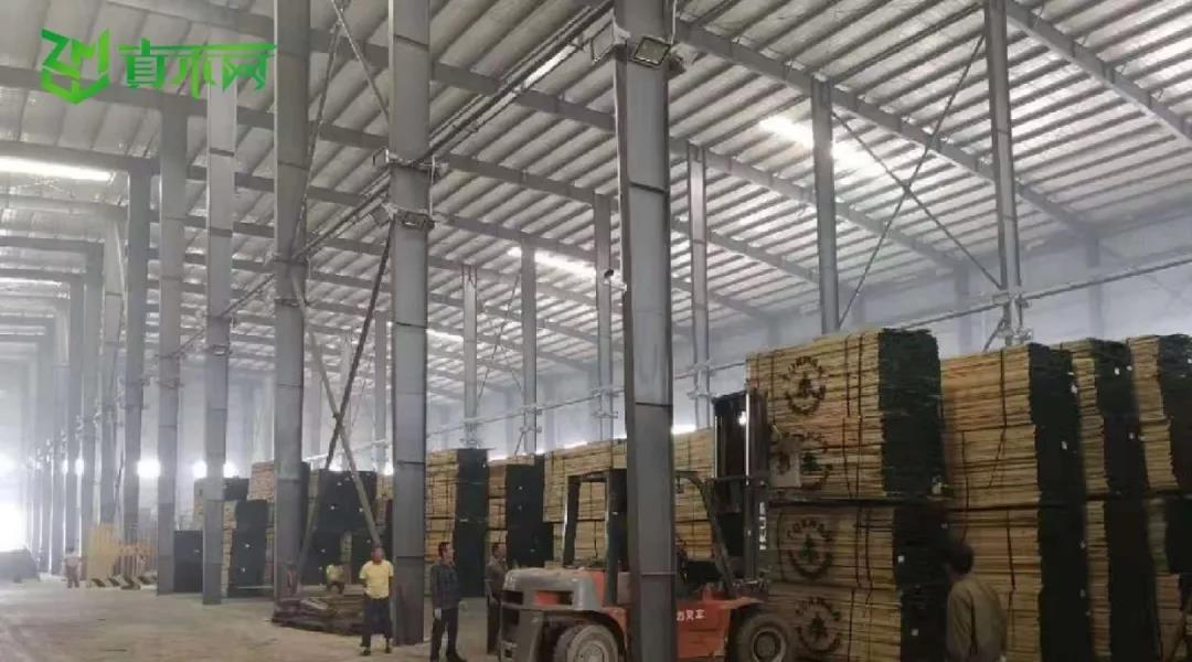 真木网入驻合作商家大量采购木材,迎接年底购物季.jpg