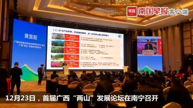 广西森林覆盖率稳居全国第三、木材产量稳居全国第一!.jpeg