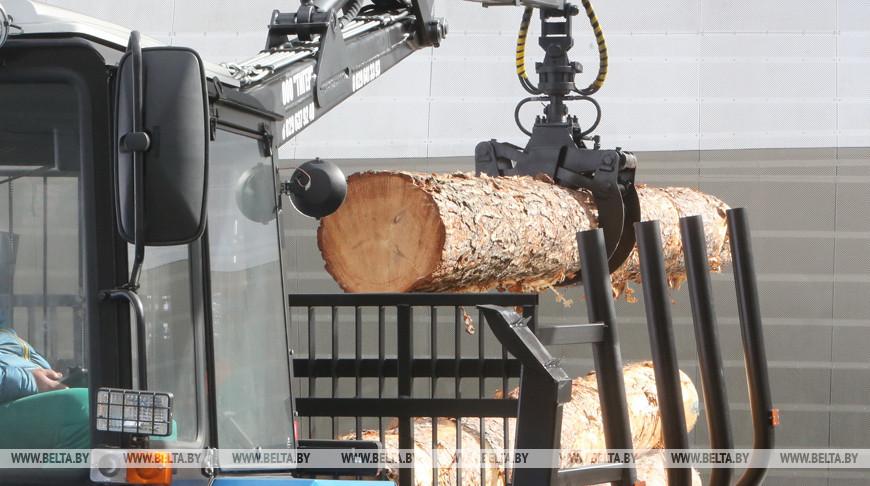 自 2015 年以来,白俄罗斯木材工业出口翻了一番.jpg