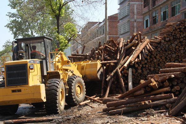 聞名遐邇的中南木材市場如何退市.png