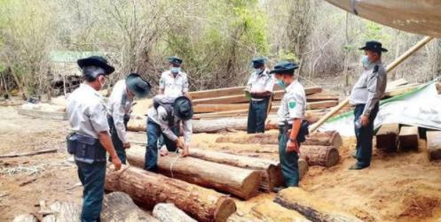 為何緬甸走私木材情況如此嚴重.png