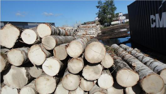 深圳木材市场.png