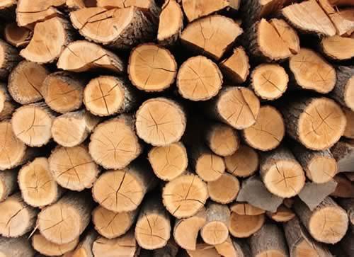 2020年全球木材產量增長加速.jpg