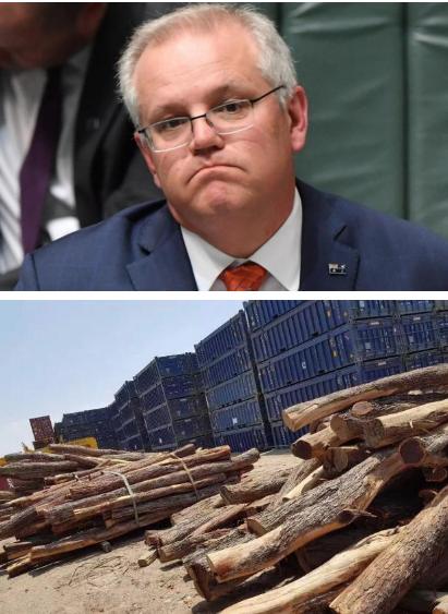 手把手教会木材商如何挣到第一个100万