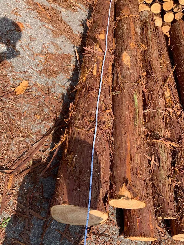建筑木方为什么会出现开裂的原因
