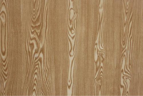 木材小科普-水曲柳