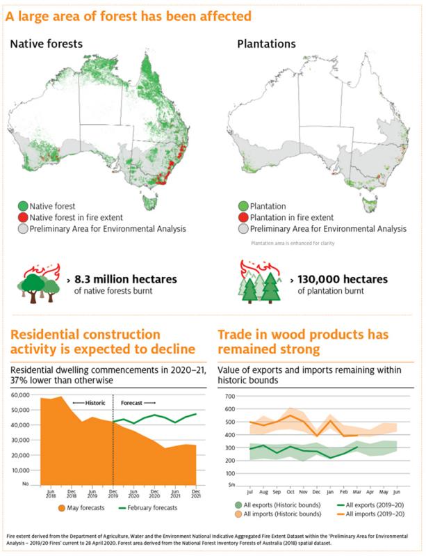 深林大火和COVID-19对林业和木材加工部门的影响