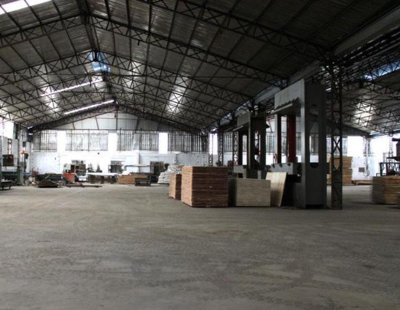 南宁胶合板厂开单视频最新
