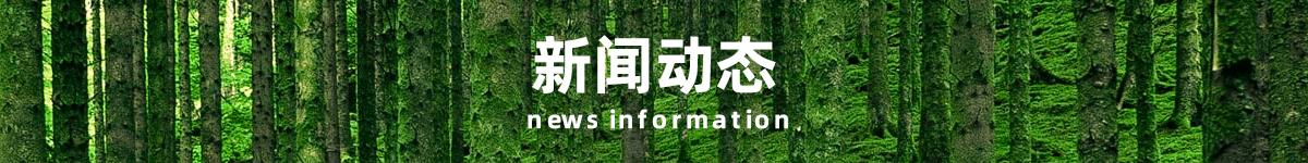 真木网-新闻动态