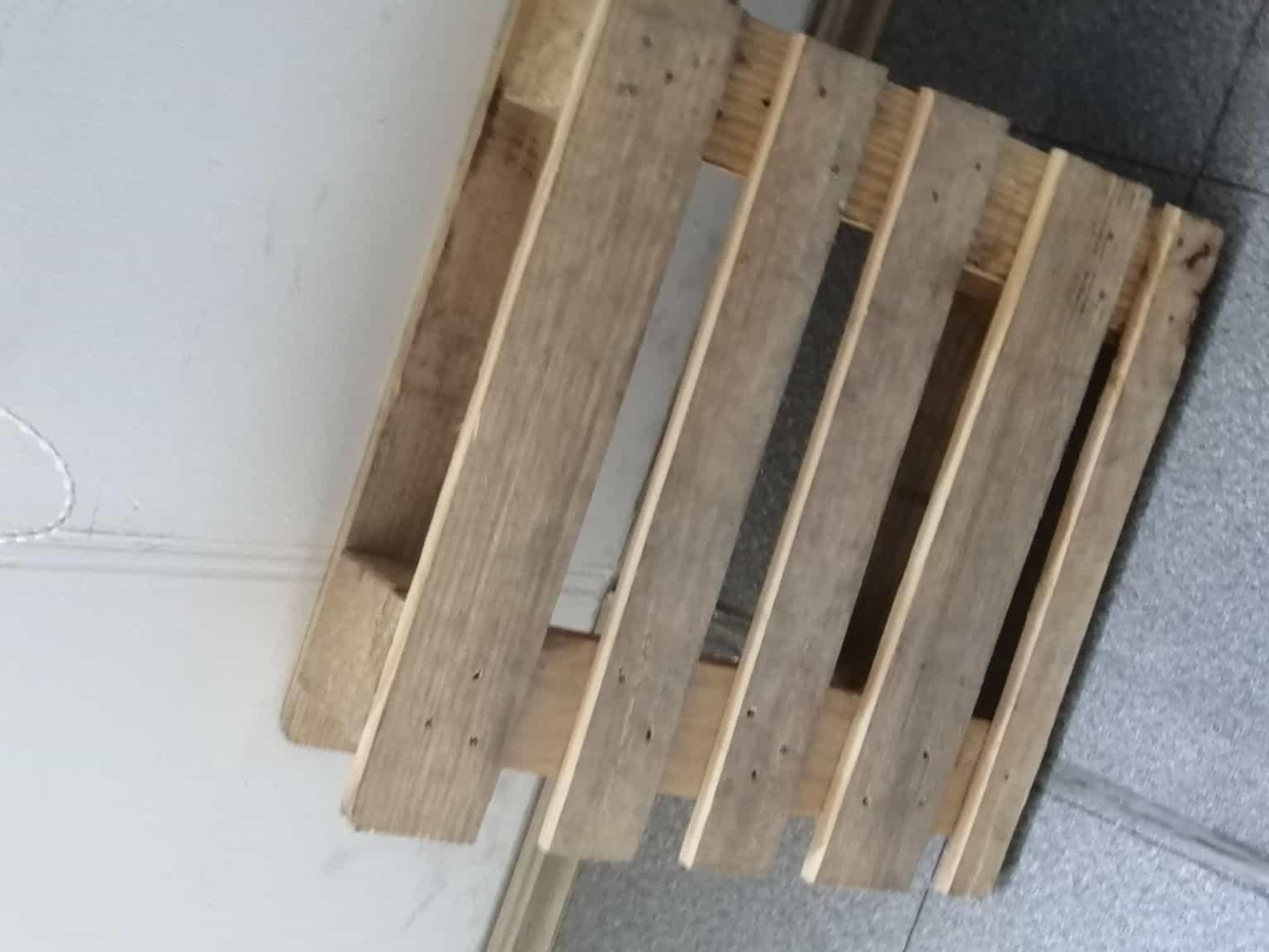 廊坊松木实木托盘报价过程中
